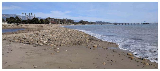 photo of beach debris