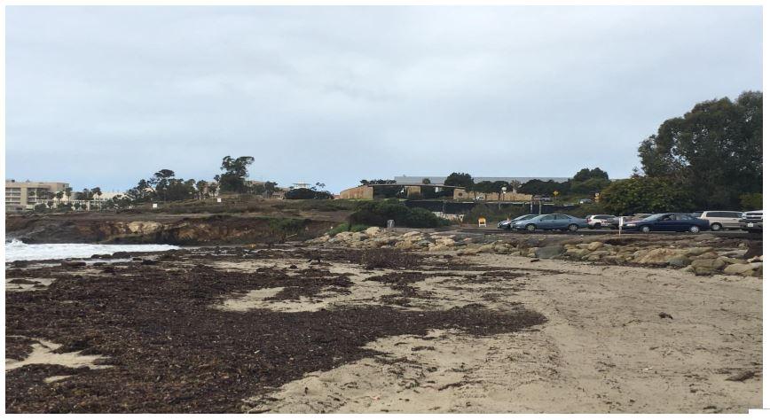 Goleta Beach 2018